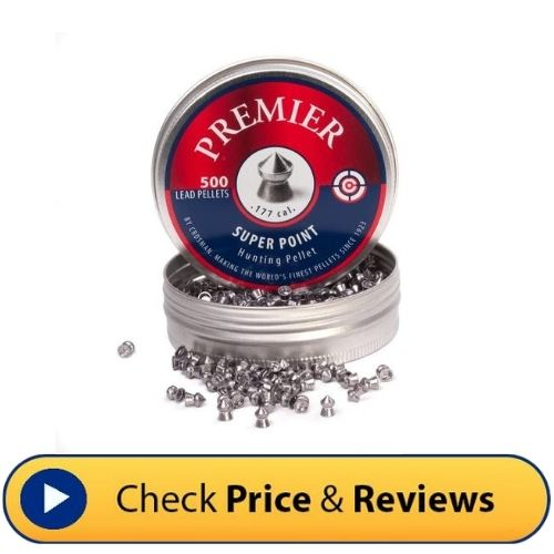 Crosman Super Point Pellets: good for small to medium distances