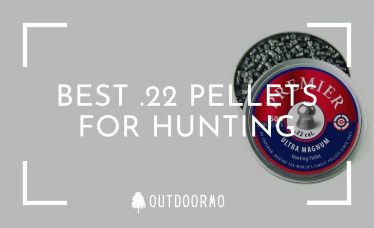best .22 pellets for hunting - Best .22 Pellets for Hunting with Accuracy