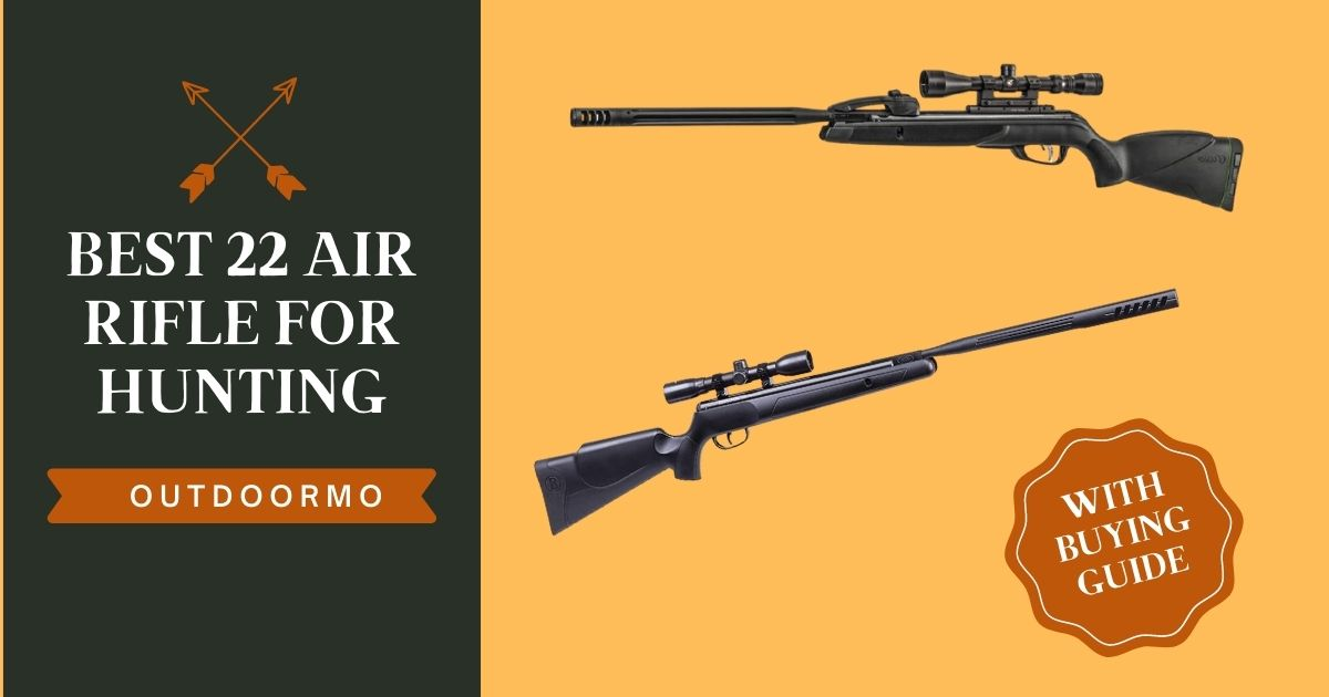 best 22 air rifles for hunting - Best .22 Air Rifle for Hunting Reviews {Budget Friendly} (2021)