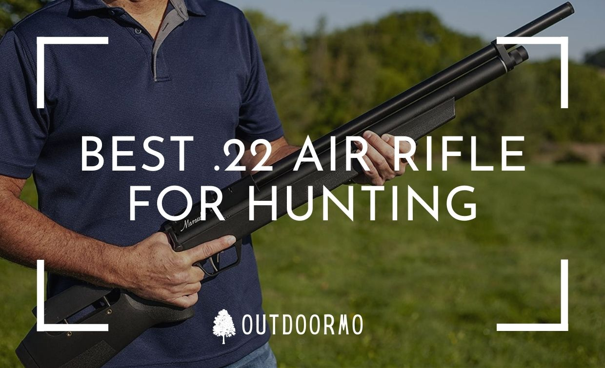 best .22 air rifle for hunting - Best .22 Air Rifle for Hunting Reviews | Budget Friendly