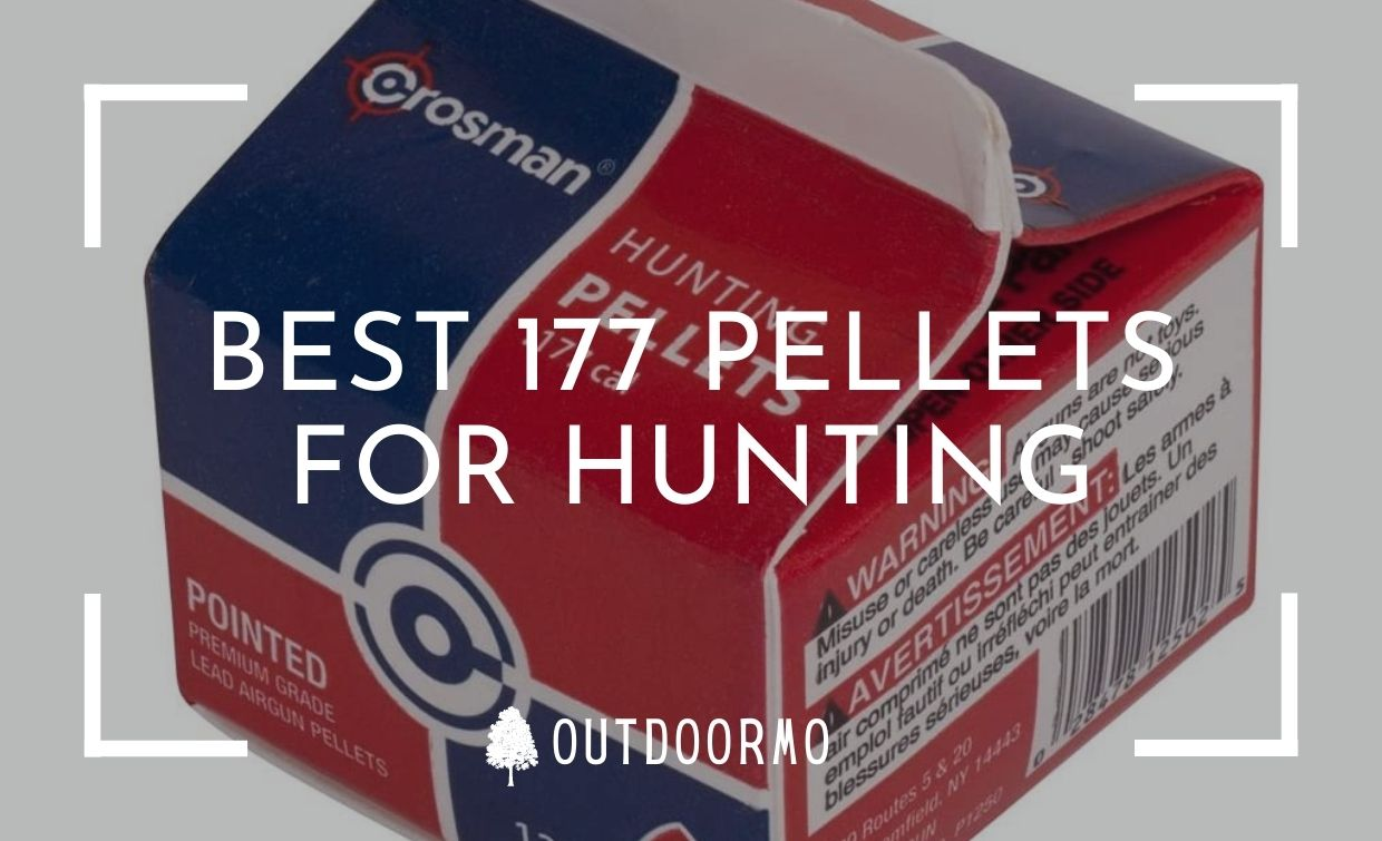 best 177 pellets for Hunting - Best 177 Pellets for Hunting, Accuracy, Small Things (2021)